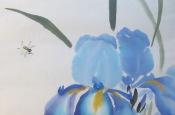 Iris. Traditional Chinese painting goku